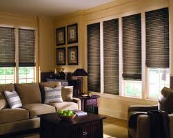 Living Room Blinds And Curtains How To Lime Green Venetian Blinds May Make Your Room Bright 17