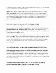 Yearly Contract Template Cool Consultant Contract Template Simple Resume Examples For Jobs