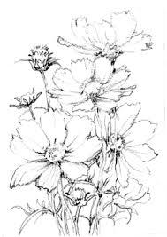 秋桜 水彩で描く 大人の塗絵 田熊 順 塗り絵で癒し 風景画 花の絵