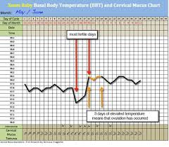 Body Temperature During Pregnancy Chart Pin On Pregnancy