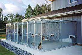 dog kennel building ideas professional dog kennel buildings