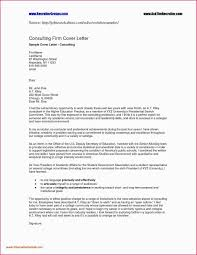 Leadership Experience Resume Examples Information Technology