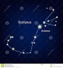 созвездие скорпиона фото
