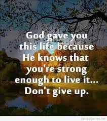 Quotes Of Never Giving Up Gorgeous Download Never Give Up On Life Quotes Ryancowan Quotes