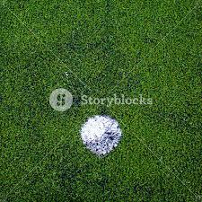 green grass football field. Football ( Soccer Ball ) In Green Grass Field. Field F