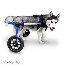 medium walkin wheels wheelchair