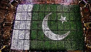 Image result for flag of pakistan