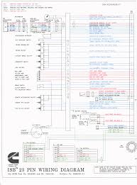 ecm details for 1998 2002 dodge ram trucks with 24 valve cummins vp44 connector at Vp44 Wiring Diagram