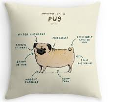 Funny Anatomy of a Pug Cute Puppy Nice Zippered Square Vintage Throw Pillow  Case Durable Great