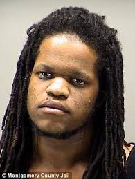 Brian Scales sentenced to 20 years to life in prison for killing ...
