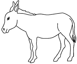 Small Picture Donkey Wearing Flower Hat Colouring Page Fun Colouring