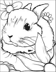 These bunny rabbit coloring pages are my latest addition to our coloring pages of animals. Printable Bunny Rabbit Coloring Page For Kids 3 Supplyme