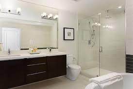 Bathroom Vanity Lights Up Or Down Brushed Nickel Light Shower