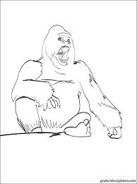 Kleurplaat Gorilla Gratis Kleurplaten