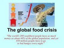 global food crisis essay homework hel thesis order table of global food crisis essay