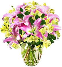 sisterly love lilies