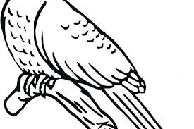 Printable Bird Nest Coloring Pages Flying Angry Collection Of Birds