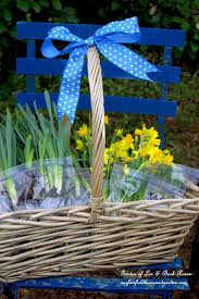 easy gardening tip planting and sharing bulbs how to fill in those flowerbed gaps