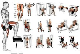 5 leg workouts a beginner s guide