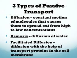 3 Types Of Passive Transport Ppt Homeostasis Osmosis Transport Unit 6 Chapter 5
