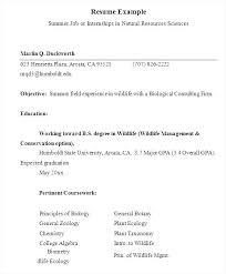 Summer Internship Resume Template Format For Summer Internship ...