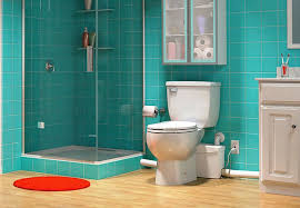 install toilet in basement. Image Of: How To Install Toilet In Basement Concrete Floor