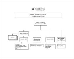 Organization Chart Download Free Company Organizational Chart Template Organization Chart