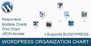 Wordpress Organization Chart Display Your Team Like A Pro