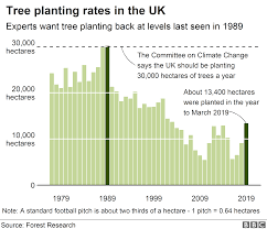 Tree Growth Rates Chart Uk Climate Change Tree Planting Rise Needs To Happen Quickly
