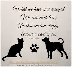 Loss Of A Pet Quotes Delectable Pet Loss Quotes Dogs Quotesgram Dog Passing Quotes