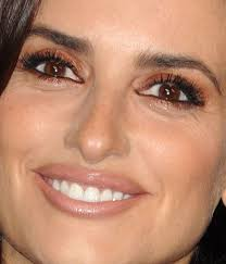 brown e s penélope cruz is wearing the most amazing shade of eyeshadow here