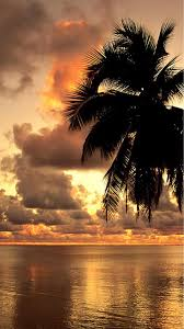Beach 79 Android Wallpaper - Sunset ...