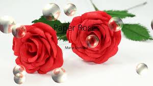 Paper Flower Lyrics Paper Roses Marie Osmond Lyrics Youtube