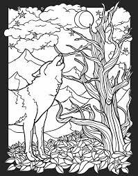 Kleurplaat Wolf Kleurplaat Kleurplaten Kleuren En Kleurplaten