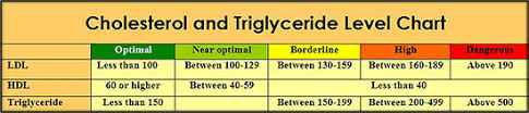 Cholesterol Chart Ldl Hdl Cholesterol Chart See Triglyceride Numbers