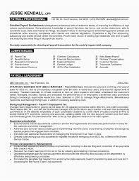 Payroll Resume Template Best Of Professional Resume Help Resume
