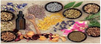 8 herbal remes to prevent hair fall