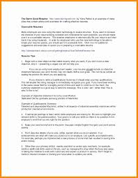 Software Programmer Resume Sample Beautiful Programmer Resume ...