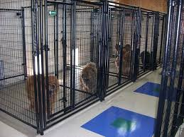 how to build a indoor outdoor dog kennel designs building ideas