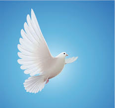Resultado de imagen para imagen del espiritu santo
