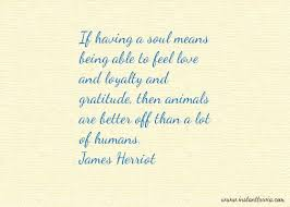 Great small quotes All Creatures Great and Small and James Herriot 99