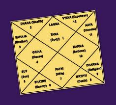 Vedic Astrological Remedies Effects Of 12 Astrological