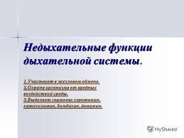Презентация на тему Реферат по биологии Дыхательная система  8 Недыхательные