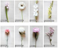 types of flowers in bouquets. flower kinds types glossary1 glossary2 of flowers in bouquets