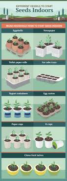 diffe vessels to start seeds indoors