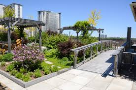 this method lets you to get all the benefits of a green roof including the insulating properties water filtration and maximum air cleansing