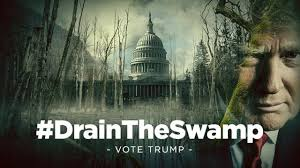 Image result for Washington, d.c. swamp gif