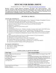 Download Business Objects Resume Sample Haadyaooverbayresort Com
