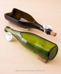these wine bottle planters from looking sharp cactus are really beautifully made