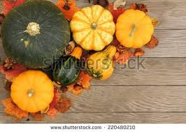 vegetable corner border. Modren Border Corner Border Of Autumn Harvest Vegetables On A Aged Wooden Background For Vegetable Border R